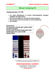 Mouse Isotoping Flyer